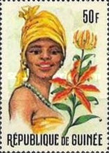 [Guinean Flora and Female Headdresses, Typ FR]