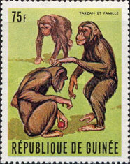 [The Famous Guinea Chimpanzee