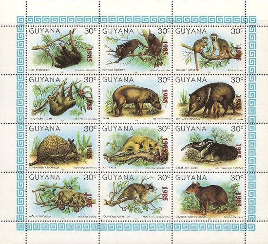 [Wildlife Protection - Issues of 1981 Overprinted
