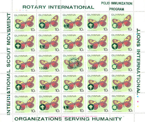 [Humanitarian Organizations - Scout Movement, Rotary International and Lions International, Typ ]
