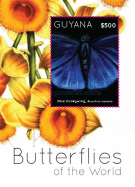 [Butterflies of the World, Typ ]