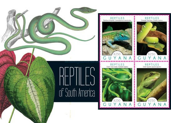 [Reptiles of South America, Typ ]