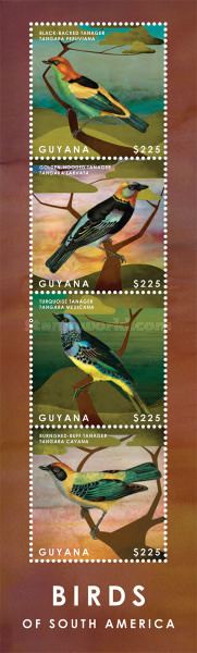[Birds of South America, Typ ]