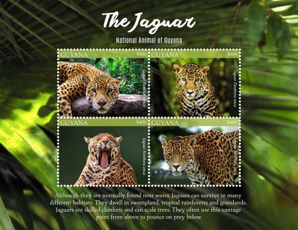 [The Jaguar - National Animal of Guyana, Typ ]