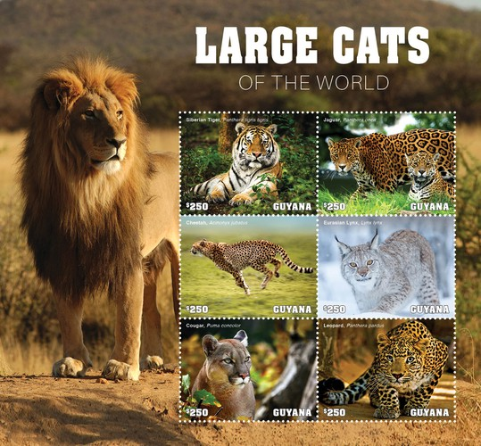 [Fauna - Large Cats of the World, type ]