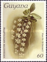 [Orchids, Typ AEJ]