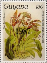 [Orchids - Overprinted, Typ ANO1]