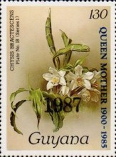 [Orchids - Overprinted, Typ ANO4]
