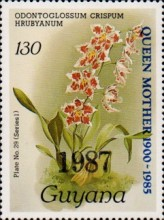 [Orchids - Overprinted, Typ ANO5]