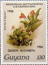 [Orchids - Overprinted, Typ ANO8]