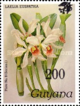 [Orchids - Overprinted, Typ ANP]