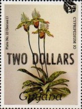 [Orchids - Overprinted, Typ ANP2]