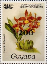 [Orchids - Overprinted, Typ ANP8]
