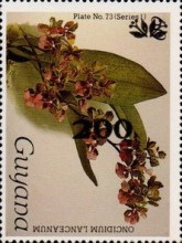 [Orchids - Surcharged & Overprinted, Typ ANR13]