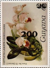 [Orchids - Surcharged & Overprinted, Typ ANR14]