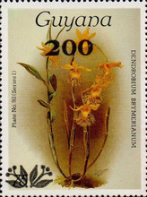 [Orchids - Surcharged & Overprinted, Typ ANR18]