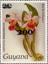 [Orchids - Surcharged & Overprinted, Typ ANR2]