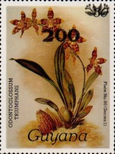 [Orchids - Surcharged & Overprinted, Typ ANR3]