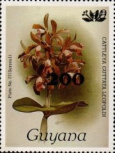 [Orchids - Surcharged & Overprinted, Typ ANR4]