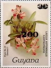 [Orchids - Surcharged & Overprinted, Typ ANR6]