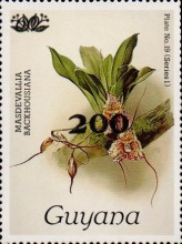 [Orchids - Surcharged & Overprinted, Typ ANR7]