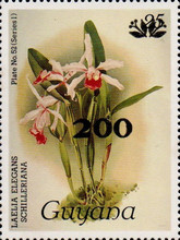 [Orchids - Surcharged, Typ ANV1]