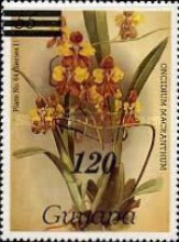 [Orchids - Various Stamps Surcharged, Typ AOY12]