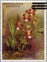 [Orchids - Various Stamps Surcharged, Typ AOY13]