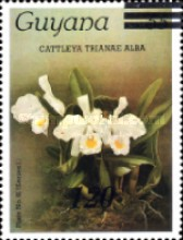 [Orchids - Various Stamps Surcharged, Typ AOY17]