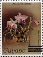 [Orchids - Various Stamps Surcharged, Typ AOY4]