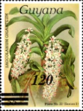 [Orchids - Various Stamps Surcharged, Typ AOY8]
