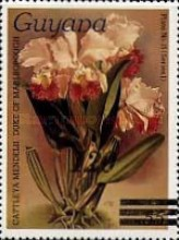 [Orchids - Various Stamps Surcharged, Typ AOY9]