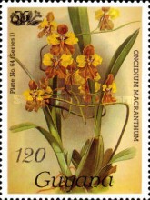 [Orchids - Overprinted or Surcharged, Typ AUA]
