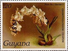 [Orchids - Overprinted, Typ AUJ]
