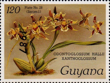 [Orchids - Overprinted, Typ AUL]