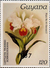 [Orchids - Overprinted, Typ AUN]