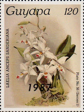 [Orchids - Overprinted, Typ AUO]