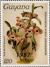 [Orchids - Overprinted, Typ AUP]