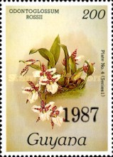 [Orchids - Overprinted, Typ AVA]