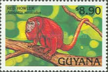 [Animals of Guyana, Typ DBH]