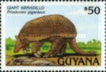 [Animals of Guyana, Typ DBL]