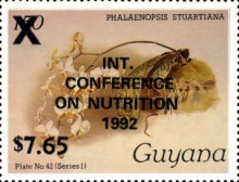 [International Conference on Nutrition, Rome - Overprinted