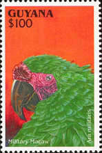 [South American Parrots, Typ DIC]