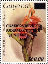 [Commonwealth Pharmacy Week, Typ FMD]