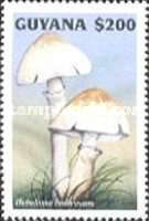 [Fungi of the World, Typ GAD]