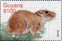 [Animals of the World, Typ INI]