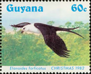 [Christmas - Swallow-tailed Kites, Typ XV]