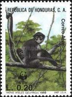 [Airmail - The Black-handed Spider Monkey, type QU]
