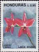 [Airmail - Orchids, type RN]