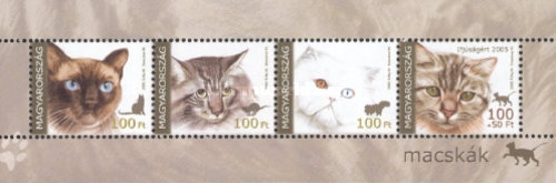 [Cats, Typ ]